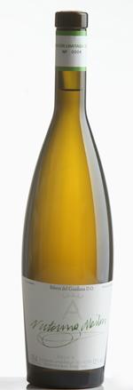 paladaressiglo21-vinos-vinosblancos-victorino-martin-2011-1.jpg