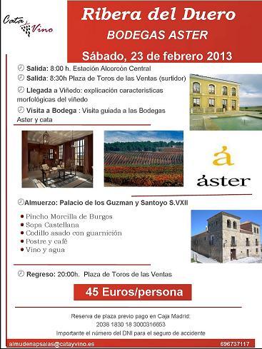aster2.jpg